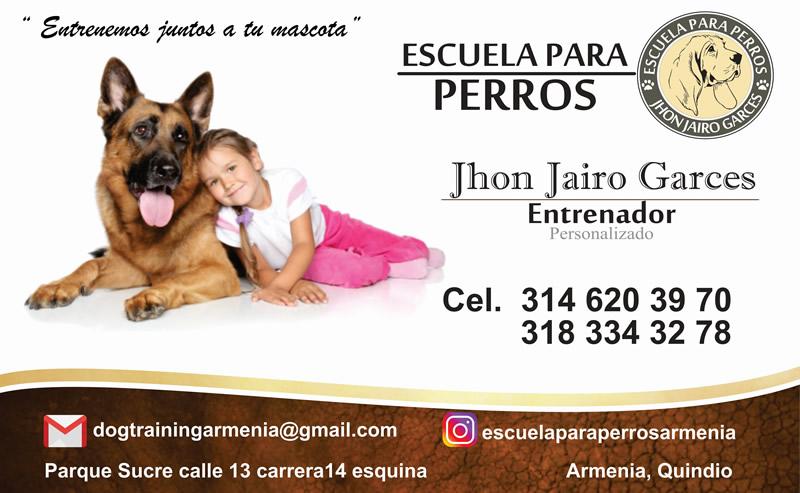 Entrenador de perros en el Quindío